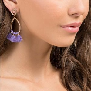 Francesca's Evony teardrop tassel earrings